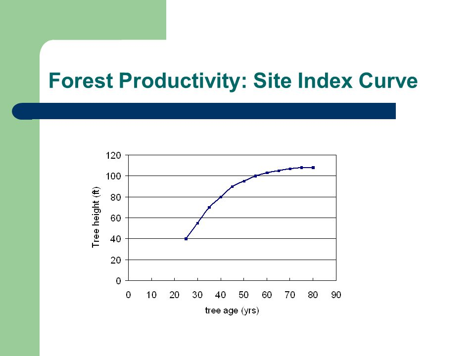 Forest Productivity: Site Index Curve