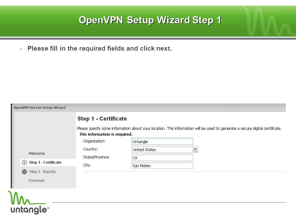 OpenVPN Setup Wizard Step 1