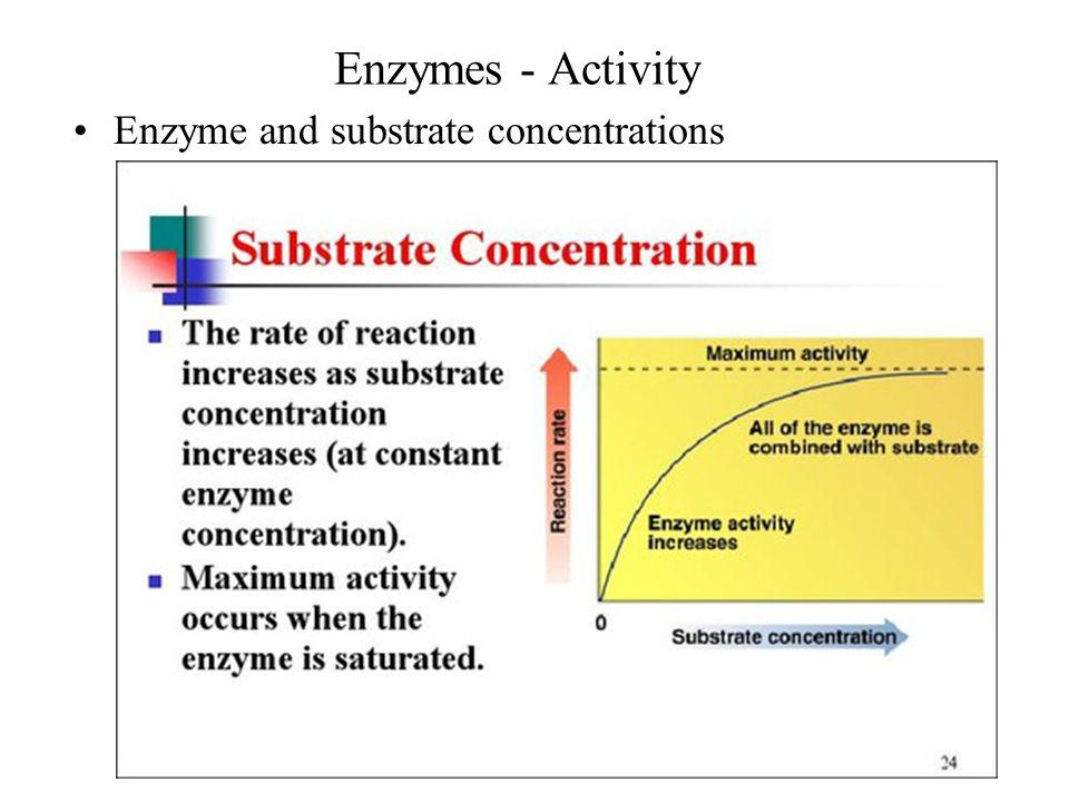Enzymes - Activity Enzyme and substrate concentrations