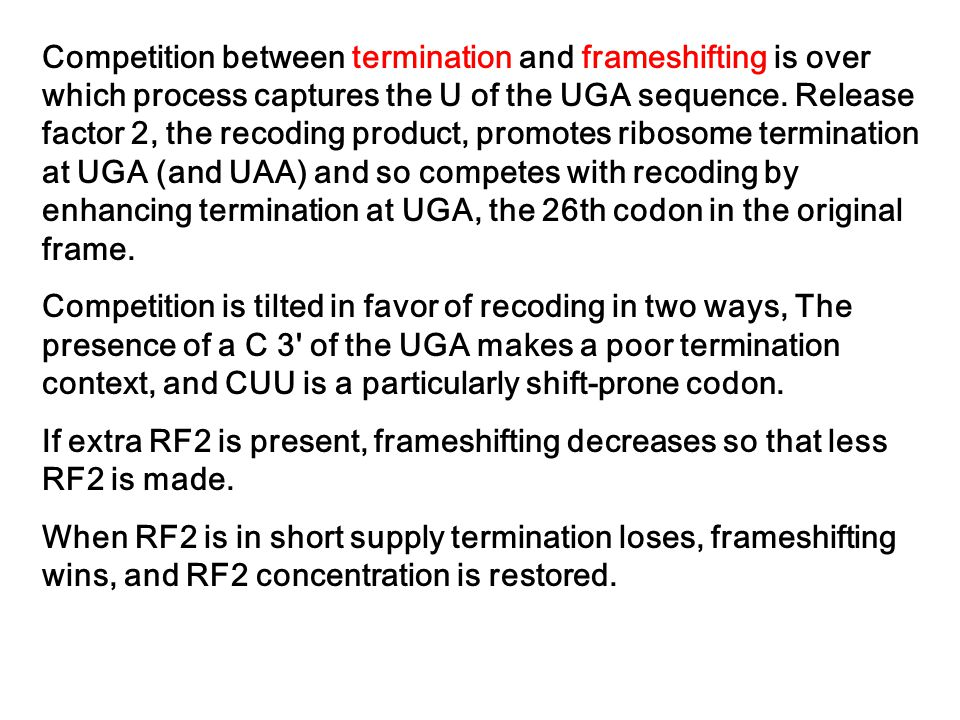 Competition between termination and frameshifting is over which process captures the U of the UGA sequence. Release factor 2, the recoding product, promotes ribosome termination at UGA (and UAA) and so competes with recoding by enhancing termination at UGA, the 26th codon in the original frame.