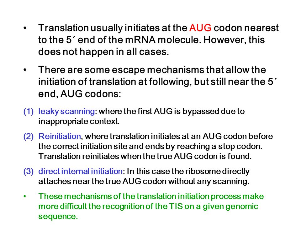 Translation usually initiates at the AUG codon nearest to the 5´ end of the mRNA molecule. However, this does not happen in all cases.