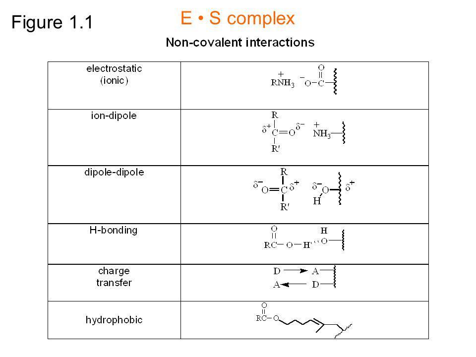 E • S complex Figure 1.1