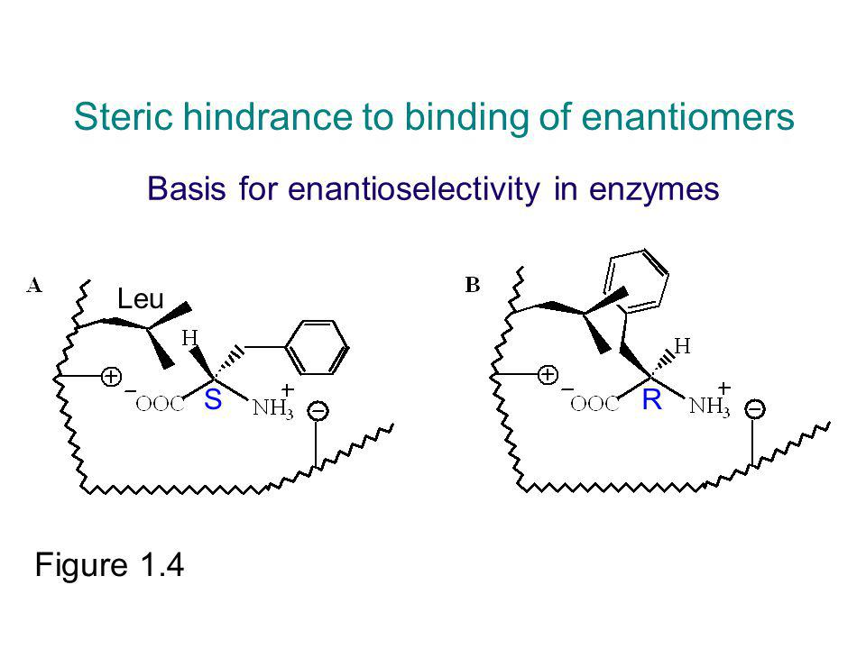 Basis for enantioselectivity in enzymes
