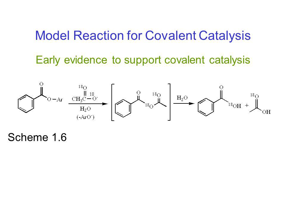 Early evidence to support covalent catalysis
