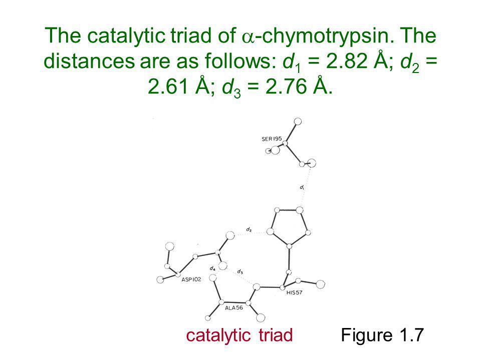 The catalytic triad of -chymotrypsin