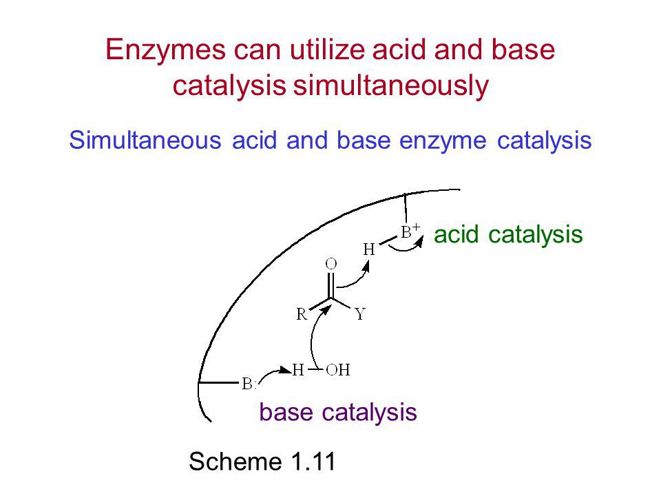 Simultaneous acid and base enzyme catalysis