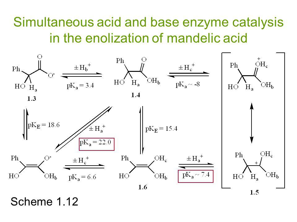 Simultaneous acid and base enzyme catalysis in the enolization of mandelic acid