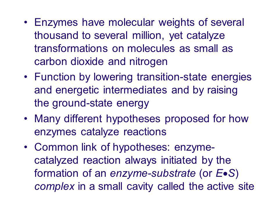 Enzymes have molecular weights of several thousand to several million, yet catalyze transformations on molecules as small as carbon dioxide and nitrogen