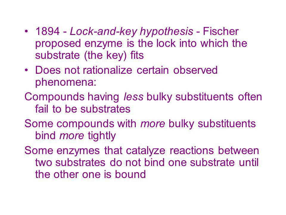 1894 - Lock-and-key hypothesis - Fischer proposed enzyme is the lock into which the substrate (the key) fits