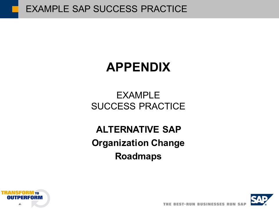 ALTERNATIVE SAP Organization Change Roadmaps