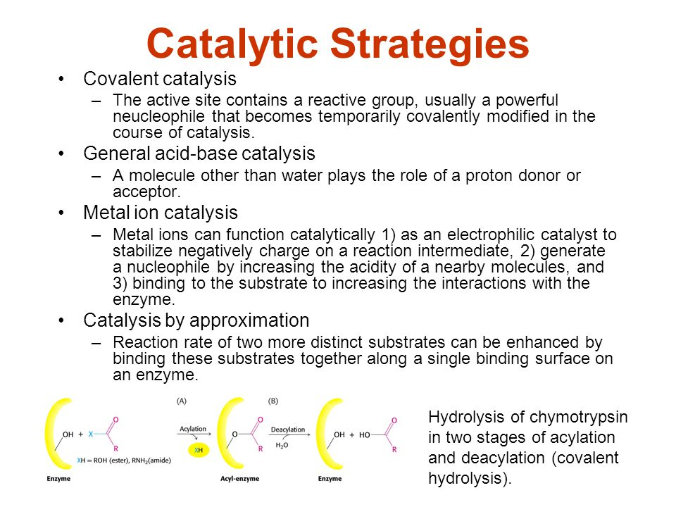 Catalytic Strategies Covalent catalysis General acid-base catalysis