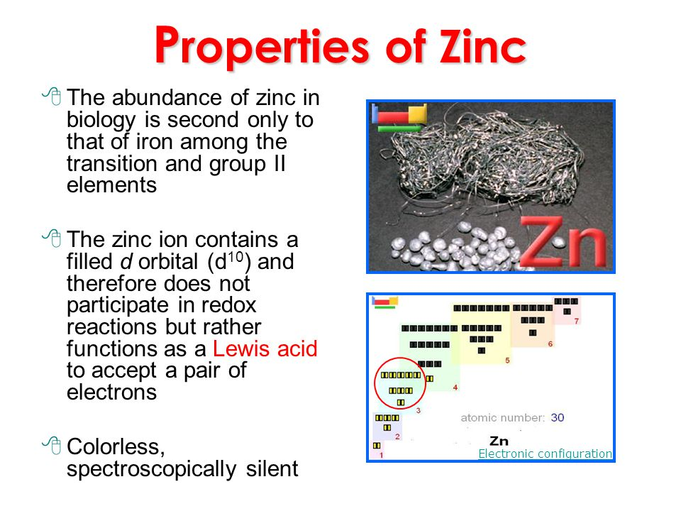 Properties of Zinc The abundance of zinc in biology is second only to that of iron among the transition and group II elements.