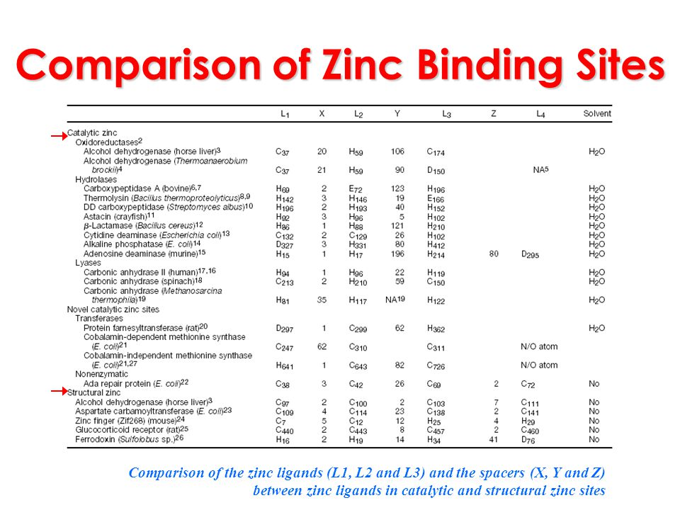 Comparison of Zinc Binding Sites
