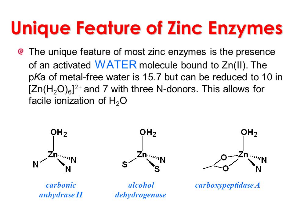 Unique Feature of Zinc Enzymes