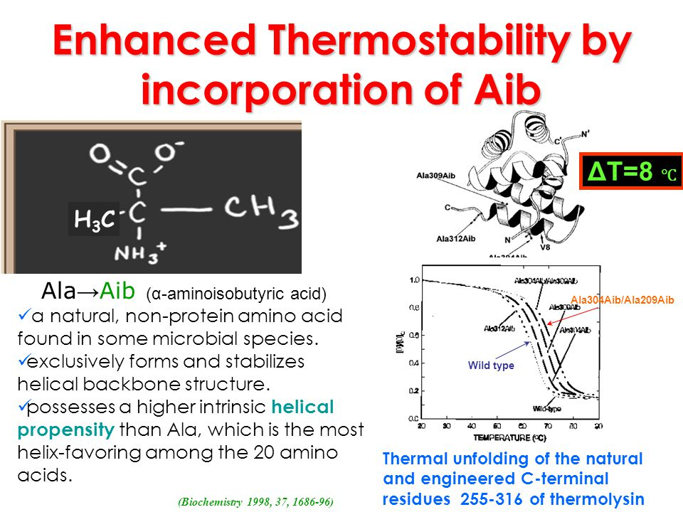 Enhanced Thermostability by incorporation of Aib