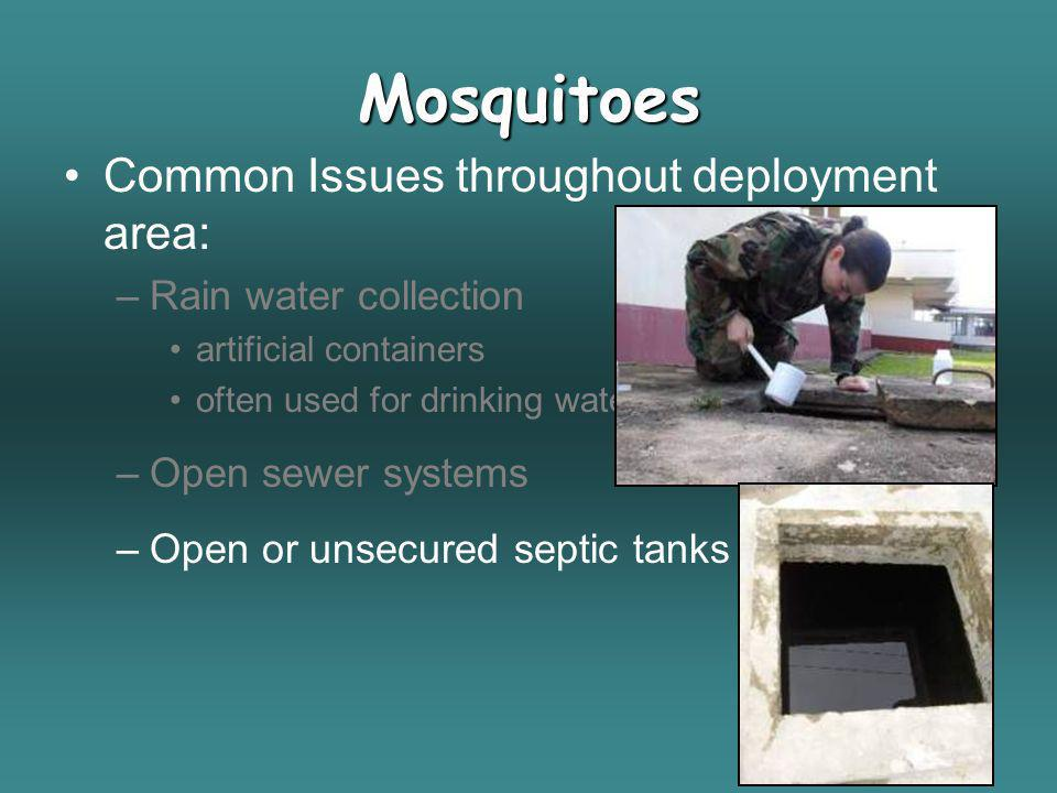 Mosquitoes Common Issues throughout deployment area: