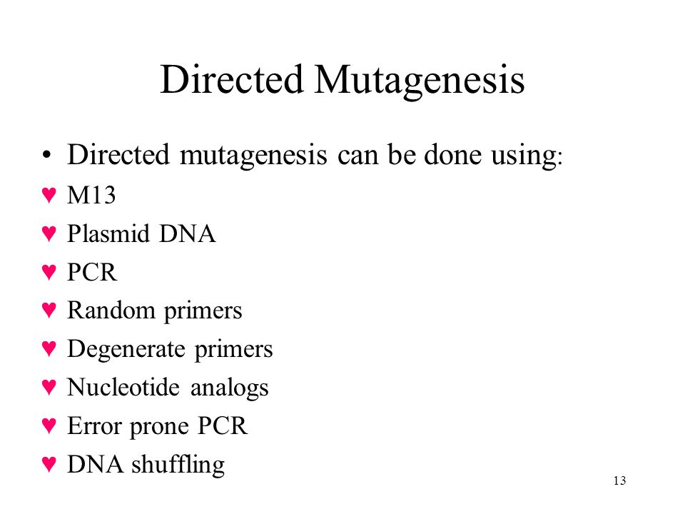 Directed Mutagenesis Directed mutagenesis can be done using: M13