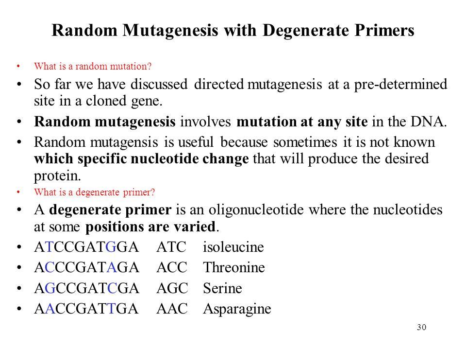 Random Mutagenesis with Degenerate Primers