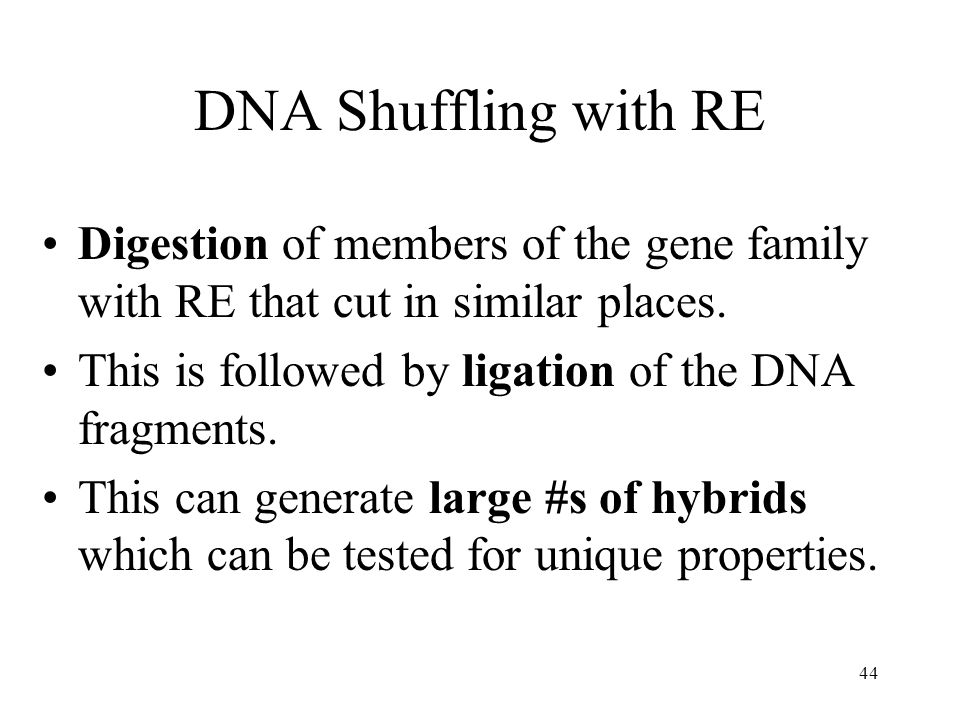 DNA Shuffling with RE Digestion of members of the gene family with RE that cut in similar places. This is followed by ligation of the DNA fragments.