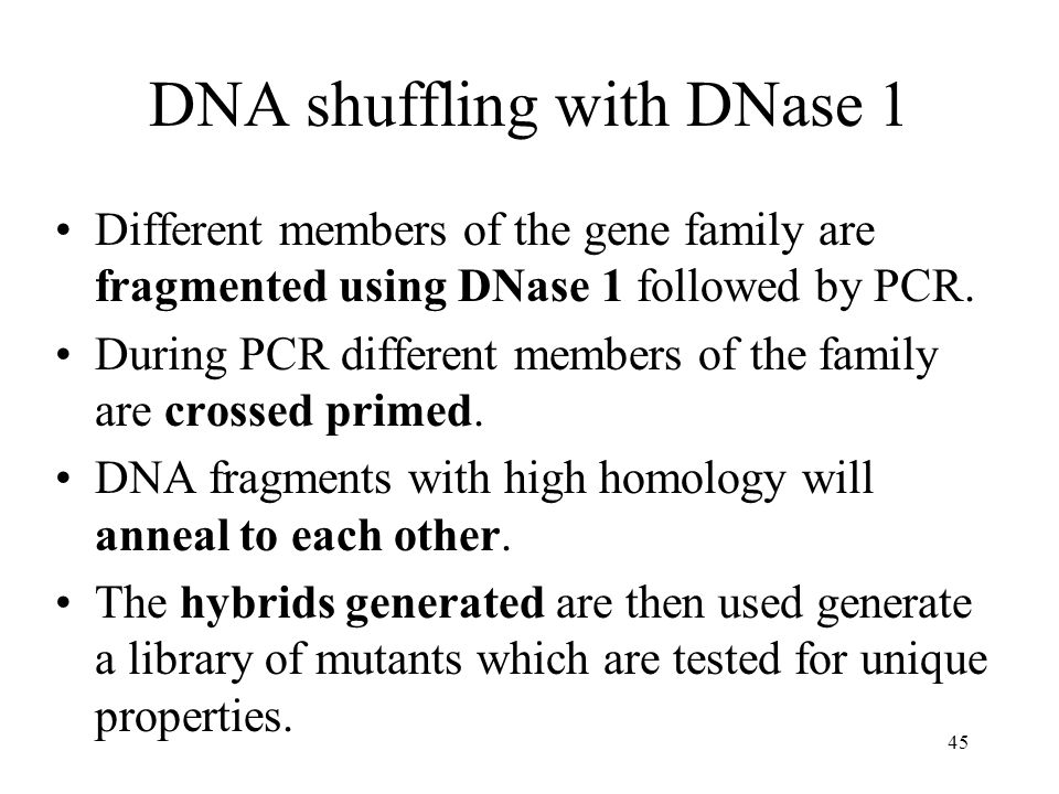 DNA shuffling with DNase 1