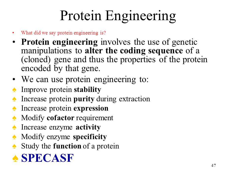Protein Engineering SPECASF