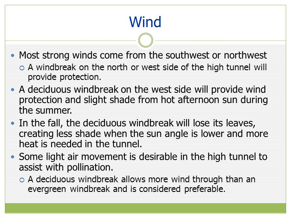 Wind Most strong winds come from the southwest or northwest