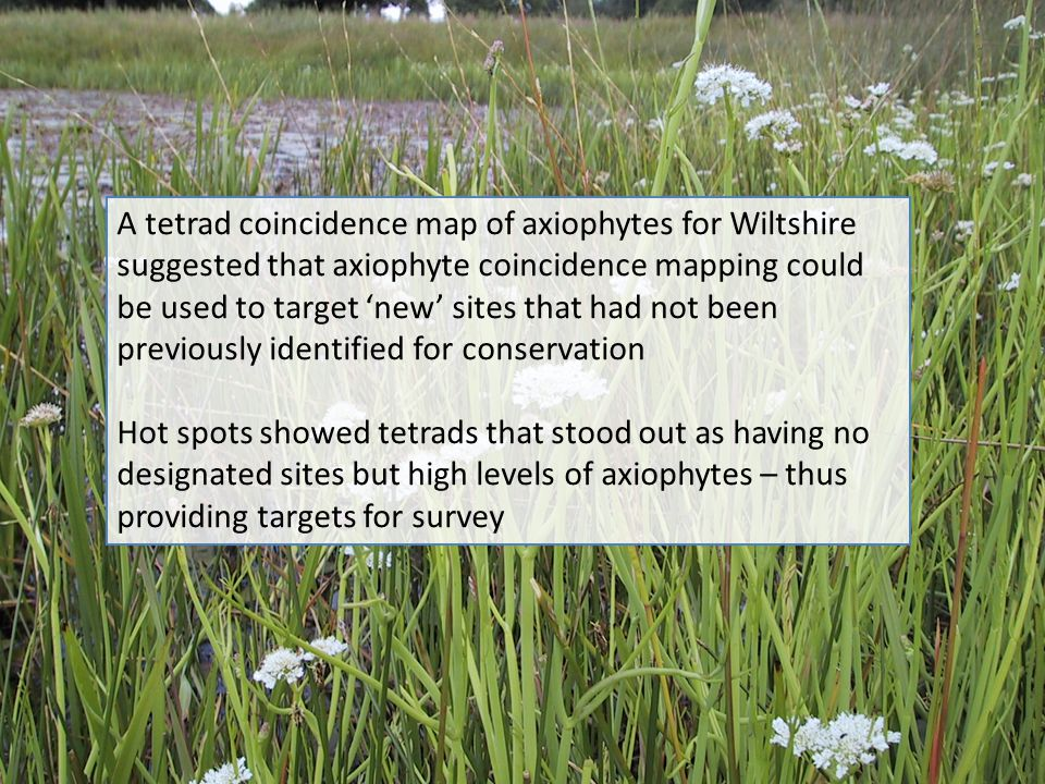 A tetrad coincidence map of axiophytes for Wiltshire suggested that axiophyte coincidence mapping could be used to target 'new' sites that had not been previously identified for conservation