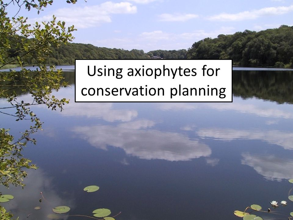 Using axiophytes for conservation planning