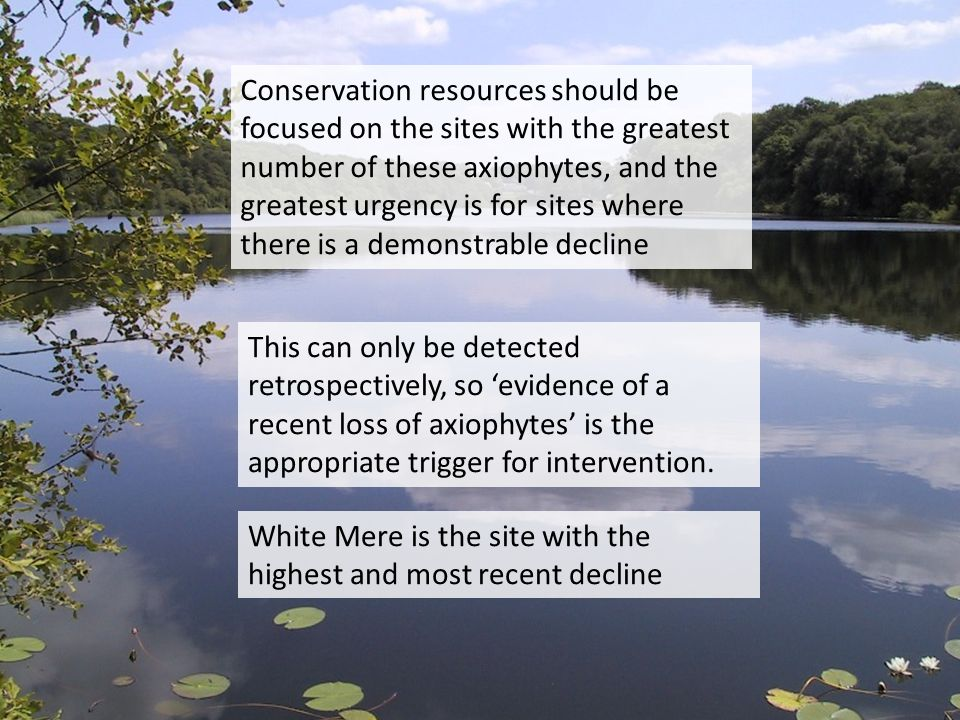 Conservation resources should be focused on the sites with the greatest number of these axiophytes, and the greatest urgency is for sites where there is a demonstrable decline