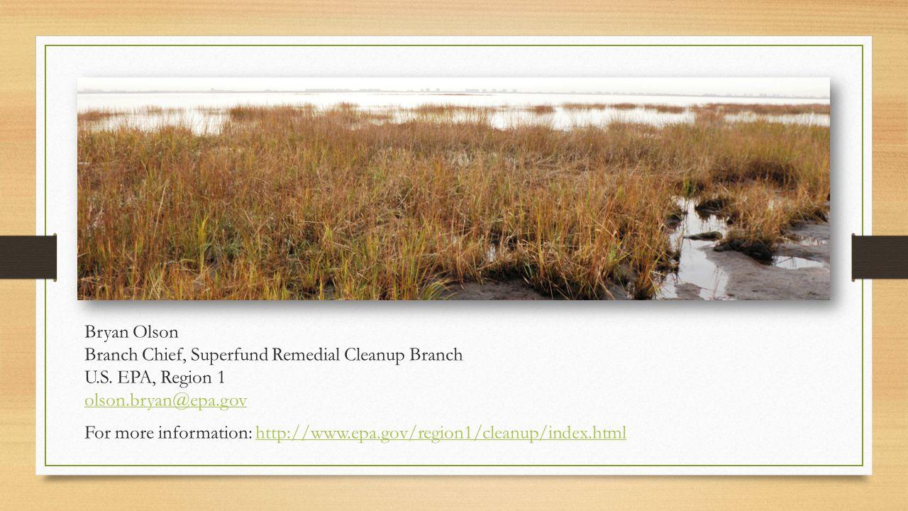 Bryan Olson Branch Chief, Superfund Remedial Cleanup Branch U. S