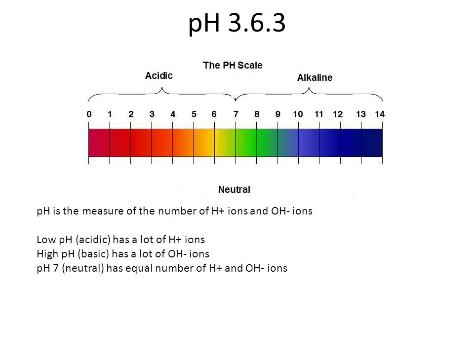 pH 3.6.3 pH is the measure of the number of H+ ions and OH- ions