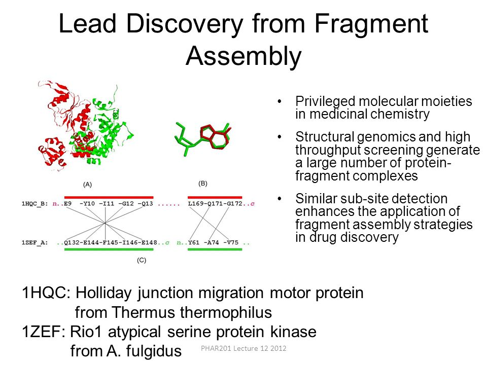 Lead Discovery from Fragment Assembly