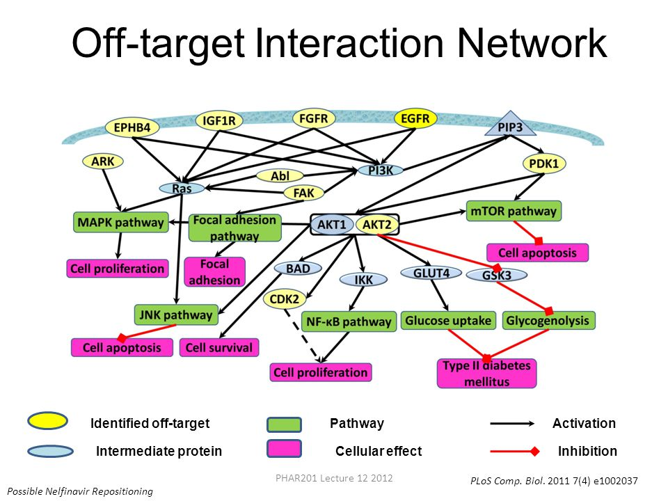 Off-target Interaction Network