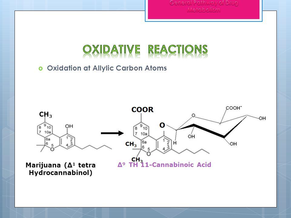 Oxidative reactions Oxidation at Allylic Carbon Atoms CH3