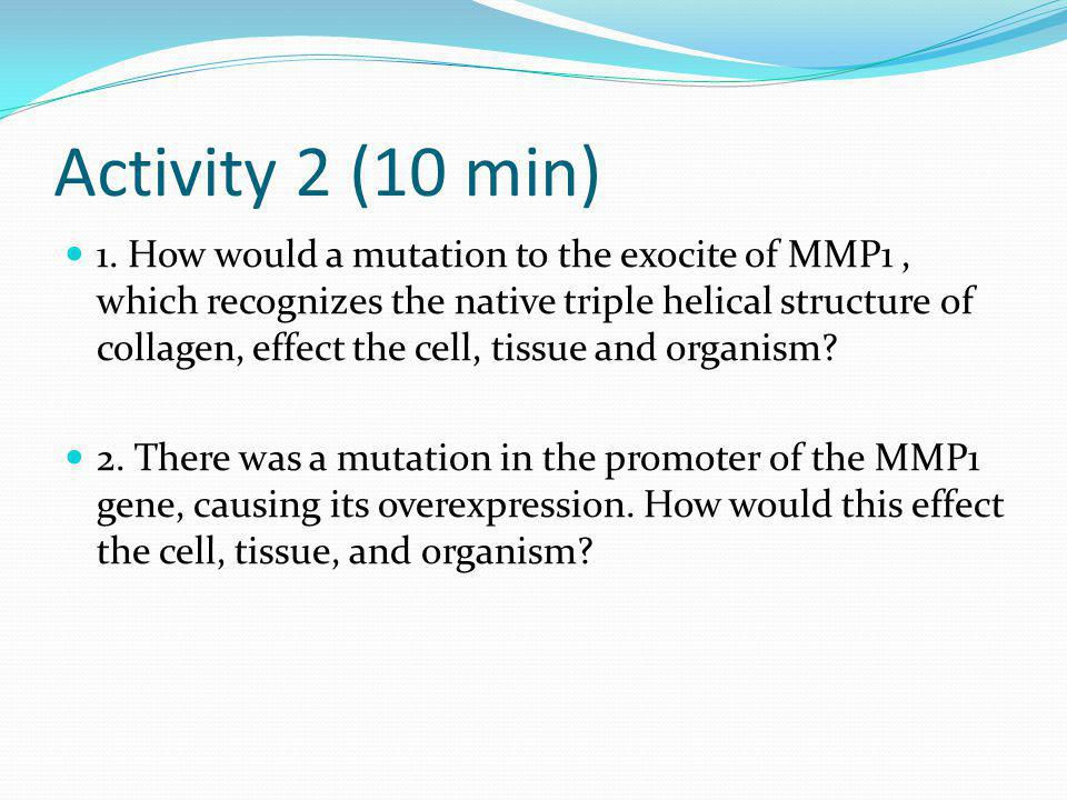 Activity 2 (10 min)