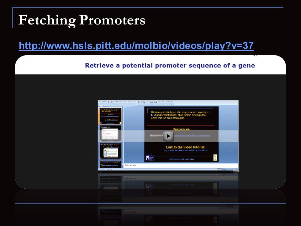 Fetching Promoters http://www.hsls.pitt.edu/molbio/videos/play v=37