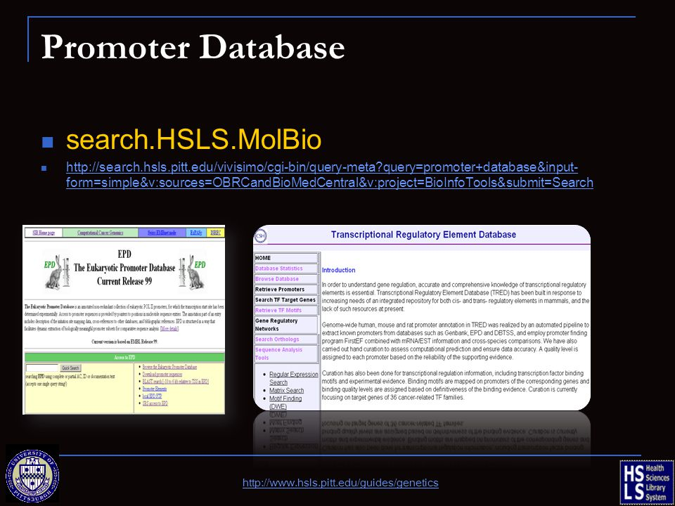 Promoter Database search.HSLS.MolBio