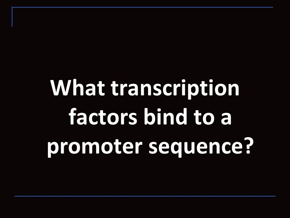 What transcription factors bind to a promoter sequence