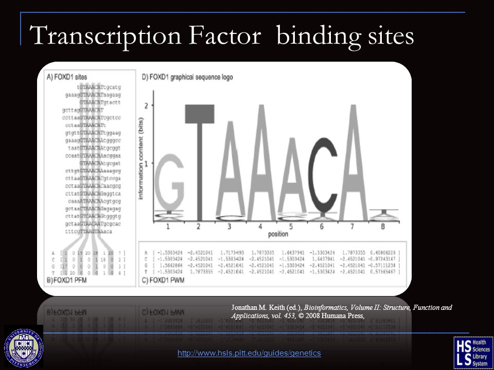Transcription Factor binding sites