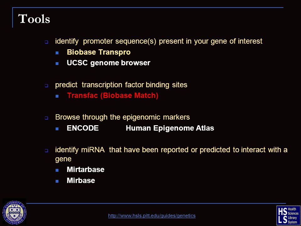Tools identify promoter sequence(s) present in your gene of interest