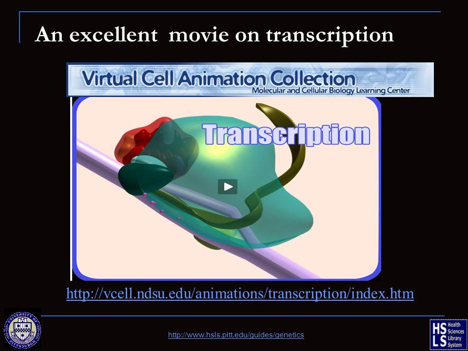 An excellent movie on transcription