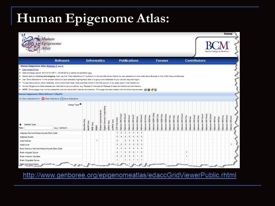 Human Epigenome Atlas: