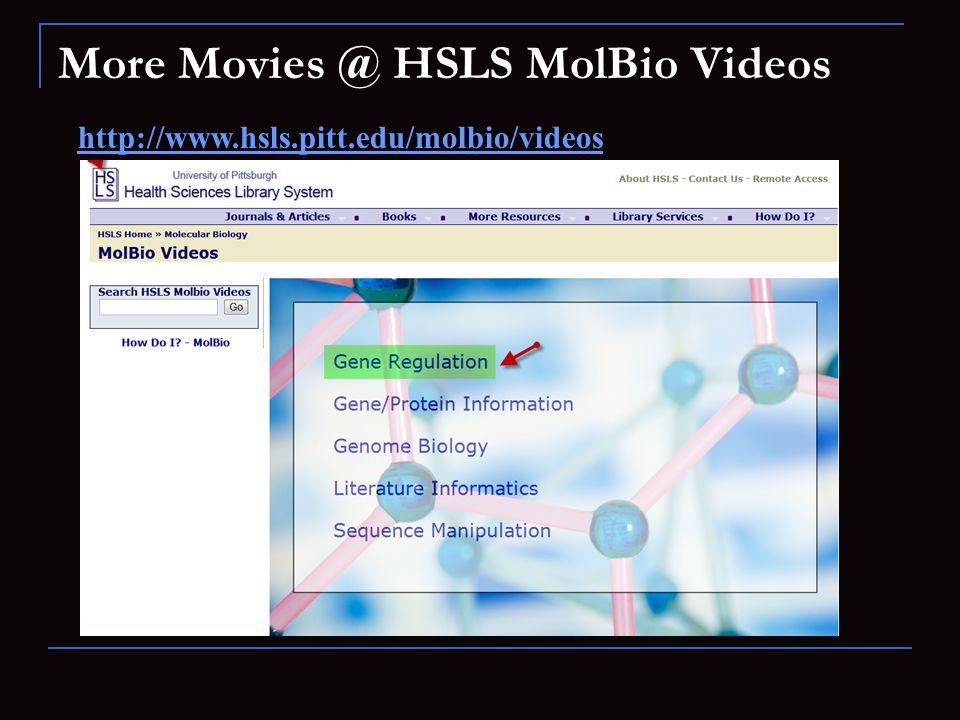 More Movies @ HSLS MolBio Videos
