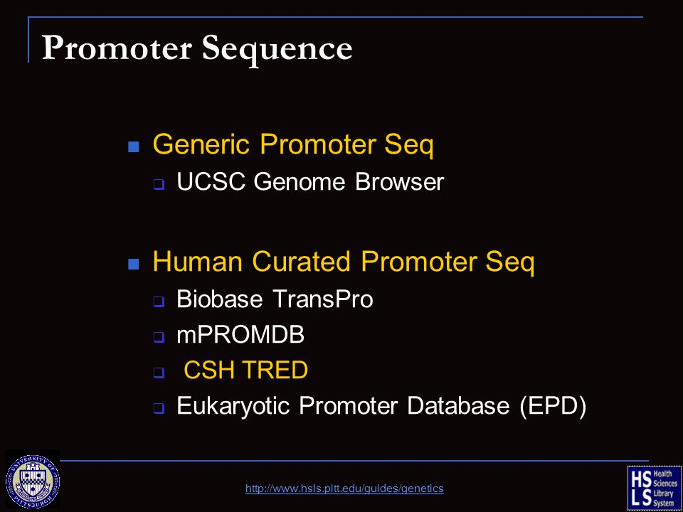 Promoter Sequence Generic Promoter Seq Human Curated Promoter Seq