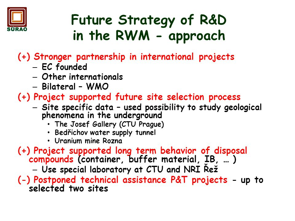 Future Strategy of R&D in the RWM - approach