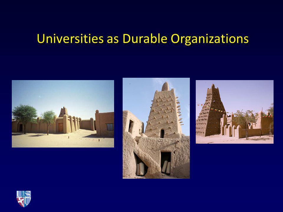 Universities as Durable Organizations