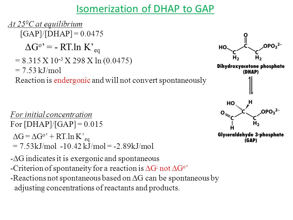 Isomerization of DHAP to GAP