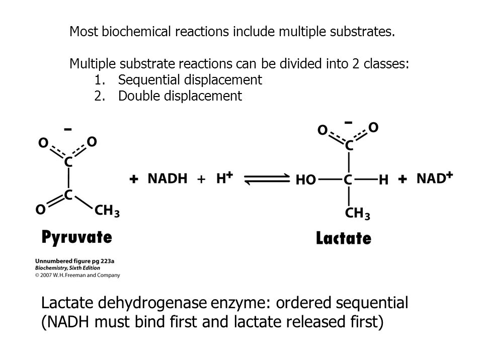 Most biochemical reactions include multiple substrates.