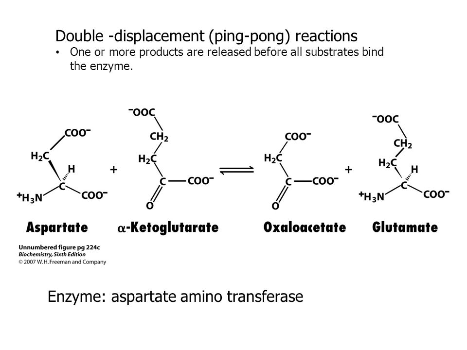 Double -displacement (ping-pong) reactions