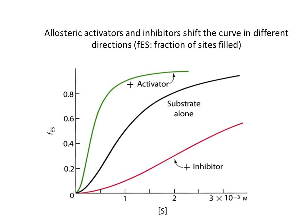 Allosteric activators and inhibitors shift the curve in different directions (fES: fraction of sites filled)